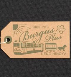 Burgus Plus